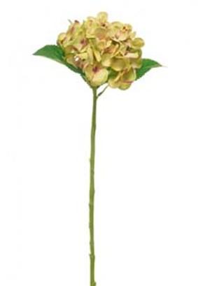 lotus-imports-ltd-silk-single-annabelle-hydrangea-green-ref-157360.jpg