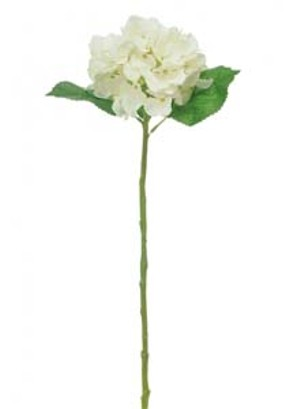 lotus-imports-ltd-silk-single-annabelle-hydrangea-ivory-ref-101360.jpg