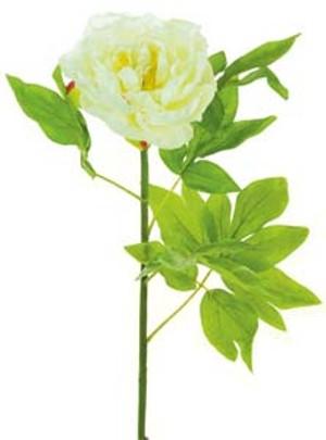 lotus-imports-ltd-silk-single-large-peony-ivory-ref-101096.jpg