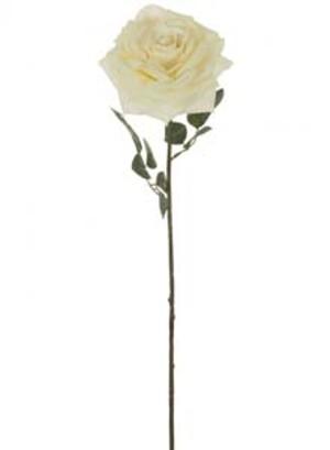 lotus-imports-ltd-silk-single-marie-rose-cream-ref-101355.jpg