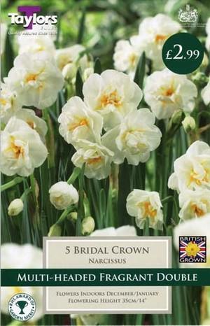 NARCISSI BRIDAL CROWN