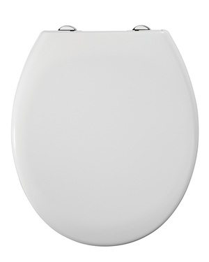 nova-molded-toilet-seat-white-plastic-hinge.jpg