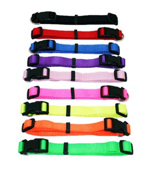 Nylon Adjustable Collar 3-4 X 14-18 Asst Colours 0190