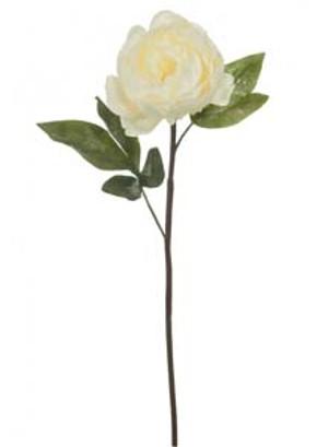 silk-sparkle-garden-peony-cream-ref-101371.jpg