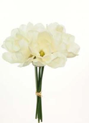 silk-sparkle-handtie-magnolia-ivory-ref-101373.jpg