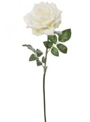 silk-sparkle-open-rose-ivory-ref-101370.jpg