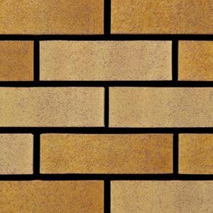 tradesman-golden-multi-buff-brick-65mm-400no-per-pack.jpg