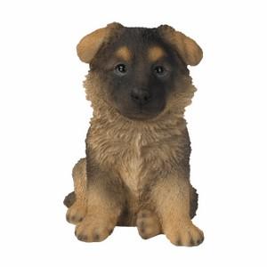 vivid-arts-alsation-puppy-pp-alsn-f.png