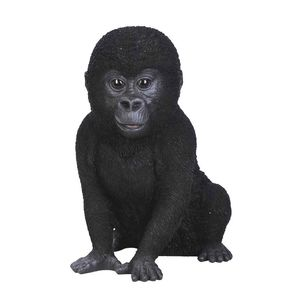 Vivid Arts Baby Gorilla XRL-GRLA-D