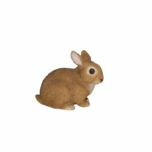 vivid-arts-baby-rabbits-f-xrl-rb02-f.png