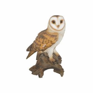 vivid-arts-barn-owl-b-xrl-barn-b.png