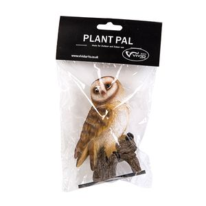 Vivid Arts Barn Owl Plant Pal Pack Plp-012
