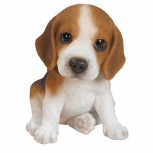 vivid-arts-beagle-pup-pp-beag-f.png
