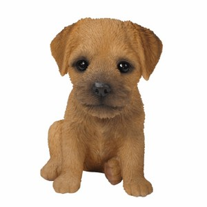 vivid-arts-border-terrier-puppy-pp-bord-f.png