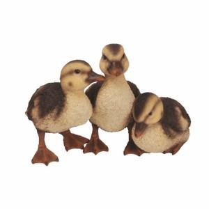 vivid-arts-duckling-group-nf-dk26-d.png