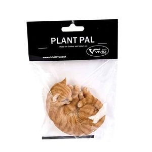 Vivid Arts Ginger Sleeping Cat Plant Pal Pack Plp-050