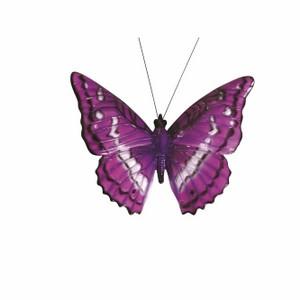 vivid-arts-glossy-butterfly-mix-bg-nbut-f.png