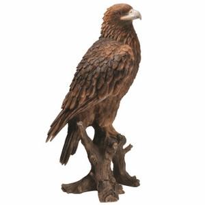 vivid-arts-golden-eagle-xrl-gdeg-b.png