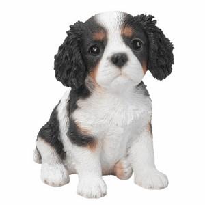 vivid-arts-king-charles-puppy-pp-kcsp-f.png