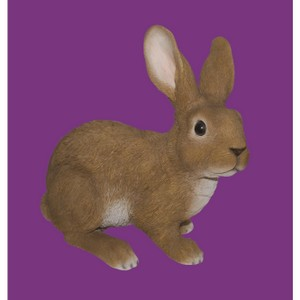 vivid-arts-large-rabbit-b-xrl-rb16-b.png