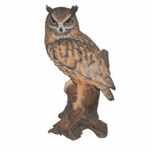 vivid-arts-long-eared-owl-b-xrl-lear-b.png