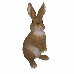 vivid-arts-lookout-rabbit-xrl-rb14-c.png