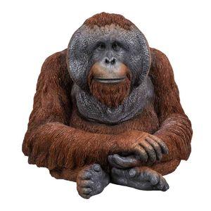 Vivid Arts Orangutan D XRL-ORAN-D