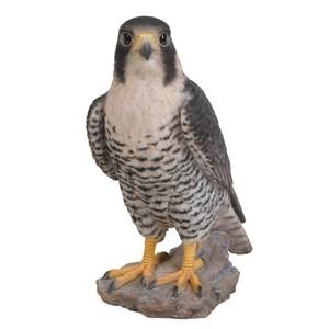 vivid-arts-peregrine-falcon-xrl-pfal-b.jpg