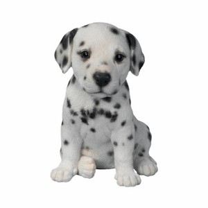 vivid-arts-pet-pal-dalmation-puppy-f-pp-dalm-f.png