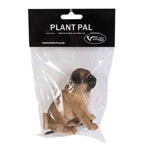 Vivid Arts Pug Plant Pal Pack Plp-040