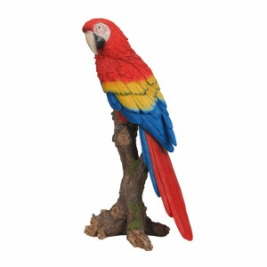vivid-arts-red-macaw-perched-b-xrl-mcw5-b.png