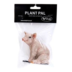 Vivid Arts Sitting Pig Plant Pal Pack Plp-020