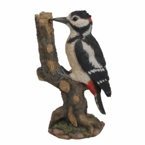 vivid-arts-spotted-woodpecker-wbc-spot-f.png