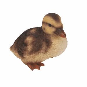 vivid-arts-squatting-duckling-nf-dk22-f.png