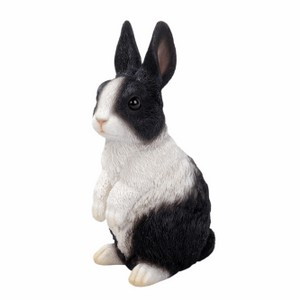 vivid-arts-standing-dutch-rabbit-xrl-pr10-d.png