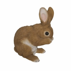 vivid-arts-standing-rabbits-xrl-rb10-d.png