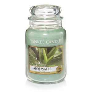 Yankee Aloe Water Large Jar