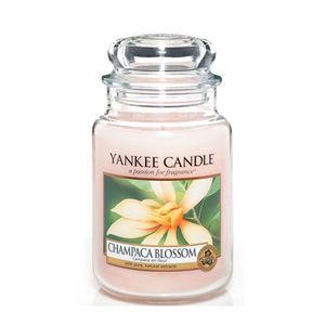 Yankee Champaca Blossom Large Jar