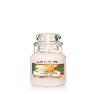 Yankee Champaca Blossom Small Jar