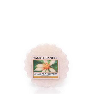 Yankee Champaca Blossom Tart