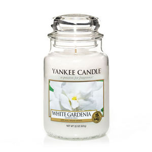 Yankee White Gardenia Large Jar