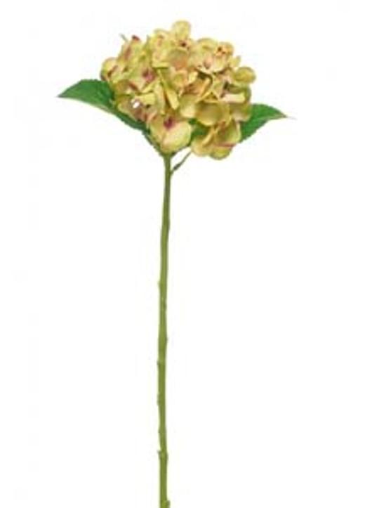 Silk Single Annabelle Hydrangea Green Ref 157360