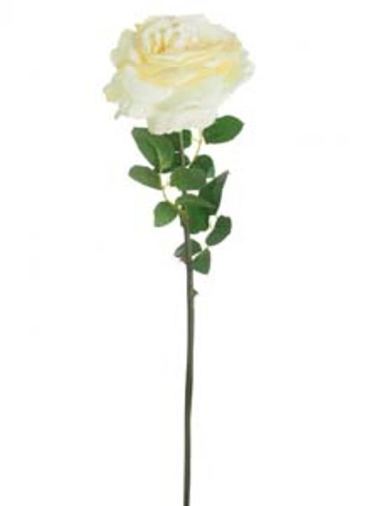 Silk Single Tudor Rose Cream Ref 101361