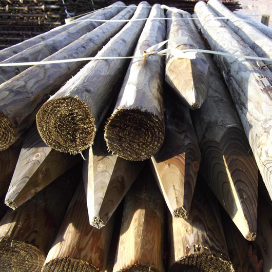 Peeled & Pointed Tree & Fencing Stake 5'6