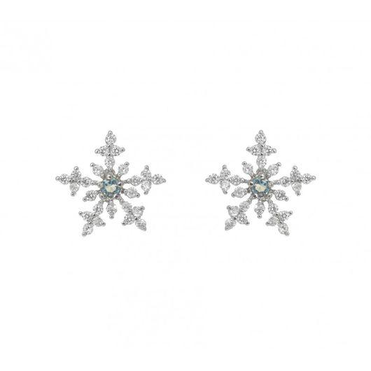 Rhodium Plated Star Earrings 1902