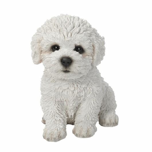Vivid Arts Bichon Frise Puppy Pp-Bchn-F