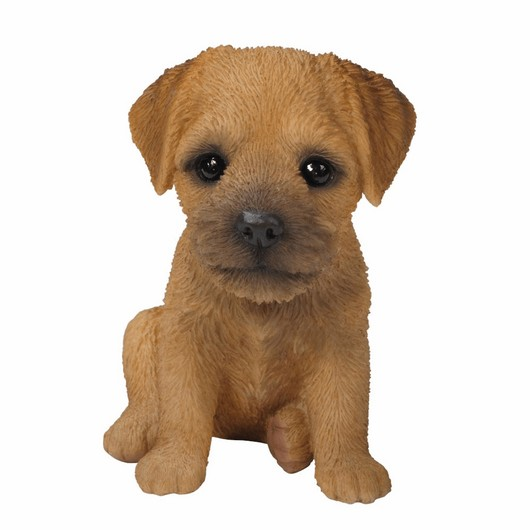 Vivid Arts Border Terrier Puppy Pp-Bord-F