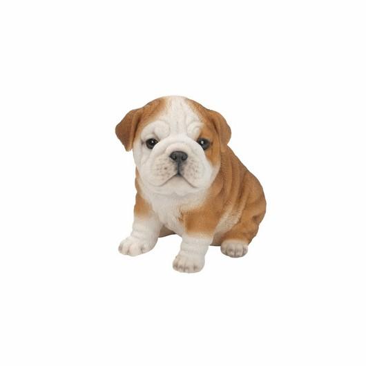 Vivid Arts Buldog Puppy Pp-Bdog-F