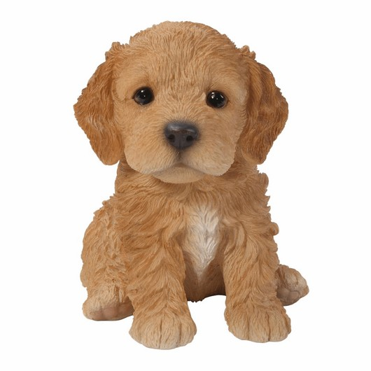 Vivid Arts Cockapoo Puppy Brown Pp-Ckp5-F