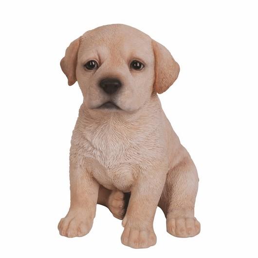 Vivid Arts Golden Labrador Pup - Pp-Labr-F
